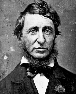 Josiah Warren est considéré comme le premier théoricien d'un courant anarchiste spécifiquement américain, courant au sein duquel se succèderont diverses ... - Henry_David_Thoreau-324x400