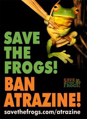 Ban-Atrazine-Poster-550