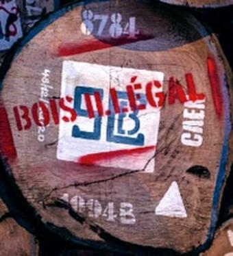 bois illegal