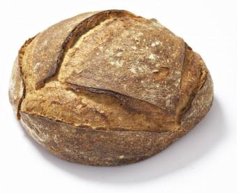 pain quotidien