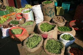 Thrissur legumes