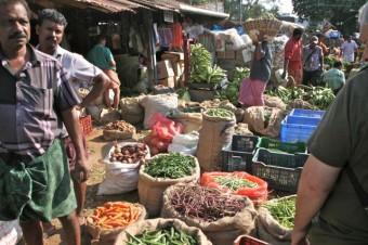 abondance agricole