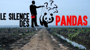 silence pandas
