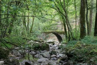 Peyrusse vieux pont