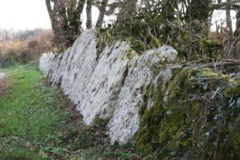 murets dalles de pierre